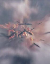 蝙蝠群飞过暴风雨和鲜血字幕的恐怖电影宣传片