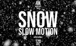 8组高帧率下雪雪花飘舞可循环视频素材 Snow 120 fps