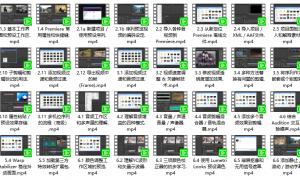 Pr CC 剪辑软件全面技能培训视频教程