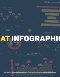 AE模板-扁平化公司企业商务信息数据图表展示MG动画包