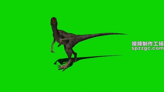 恐龙跳跃观察觅食(含音效)[00-00-02][20200629-09242374].jpg