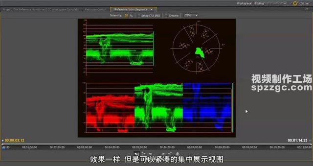 (3)基准(参考)显示器和调色工作区-spzzgc.jpg