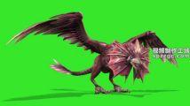 怪兽翼龙飞奔绿屏素材绿幕素材抠像