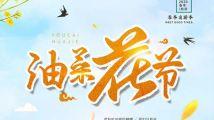 文艺卡通清新油菜花春游踏青海报